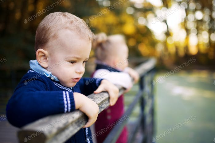 Twin toddler sibling boy and girl standing in autumn park, holding railing