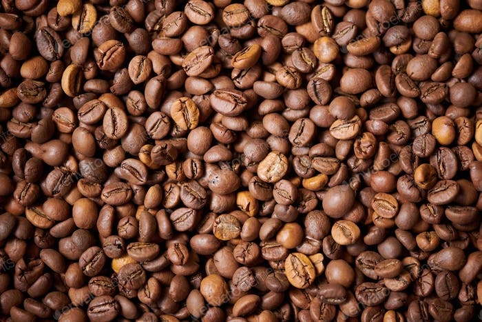 Freshly-Roasted Coffee Beans