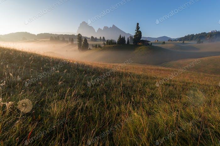 Thumbnail for Schöner Sommertag in den Dolomiten auf den Wiesen