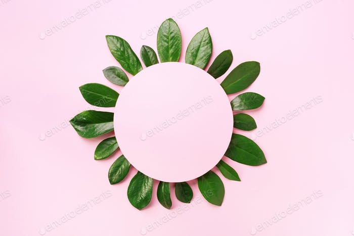 Spring green leaves pattern on pink background. Creative layout. Top view. Flat lay