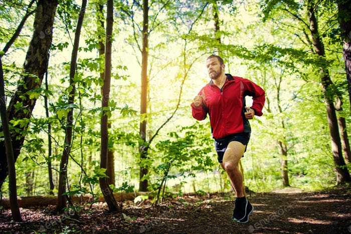 Fit young man running alone on a forest path