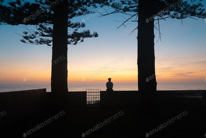 Silhouette of Man Sitting Under Trees Watching the Sunrise in a Sea Scape Background.