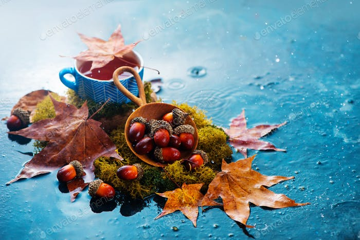 Herbst Tee Header mit blauen Keramiktasse, Eicheln in einer Holzschaufel und gefallenen Ahornblättern. Saisonale