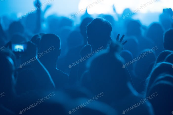 Rear view of people enjoying a concert