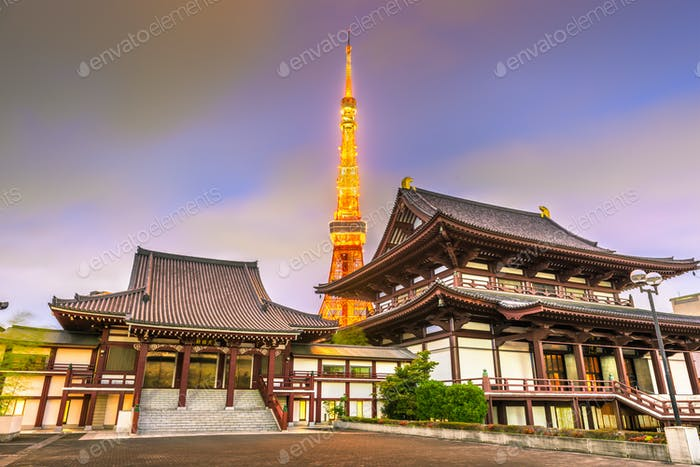 Tokyo, Japan tower and temple