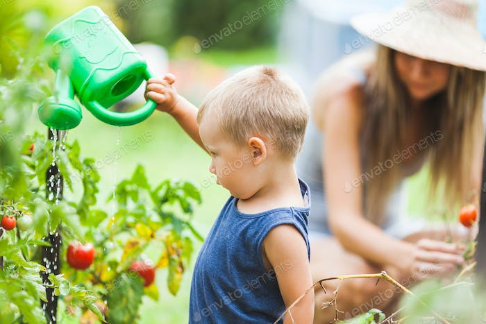 Cute toddler helphing mom in the garden