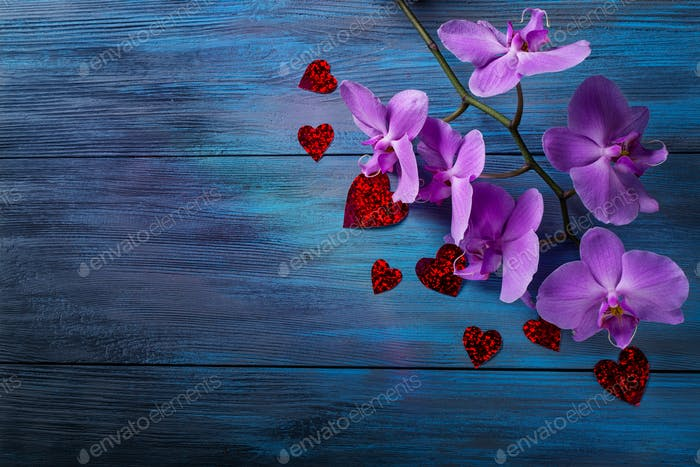 Purple Orchid and  hearts