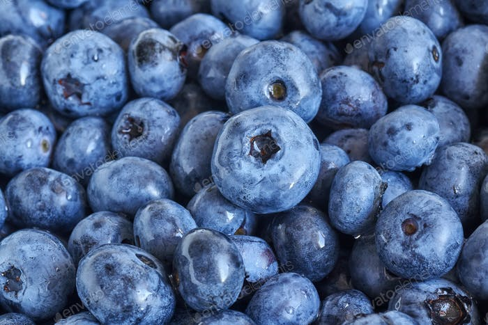 Close up picture of ripe and fresh blueberries