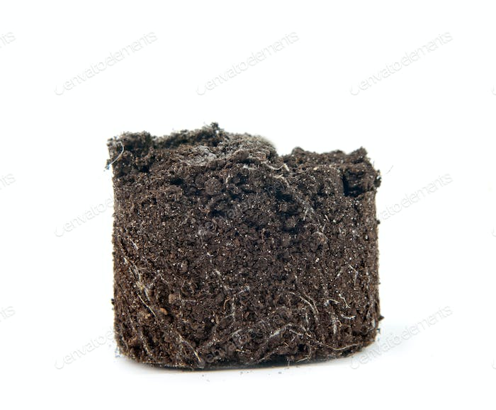 soil isolated