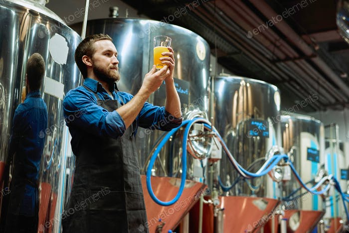 Brewery master with glass of beer in hand evaluating its visual characteristics