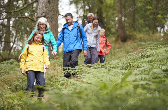 Multi generation family walking in line downhill on a trail in a forest during a camping holiday