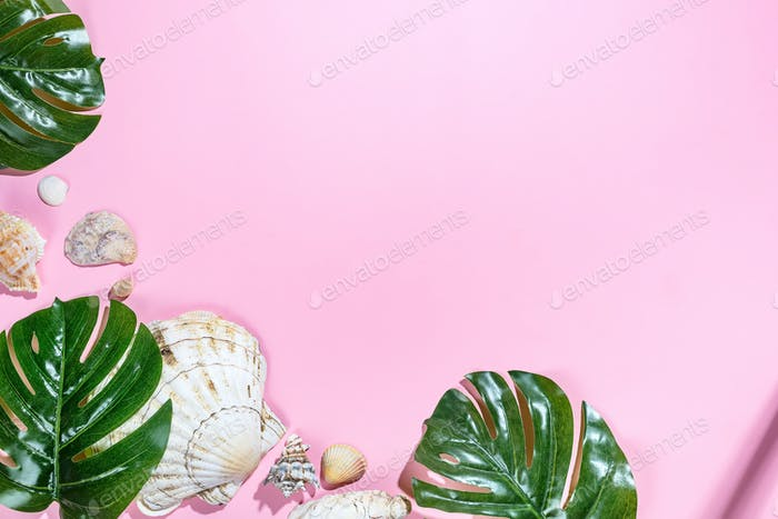 Summer background with tropical palms and seashells. Free copy space for text