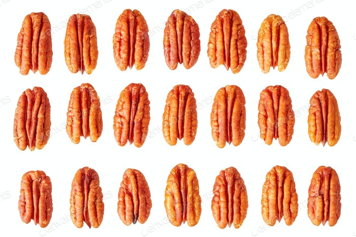 Dried pecan nut halves isolated on white.