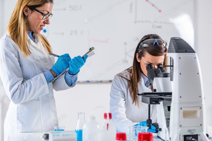 Scientists working in their lab