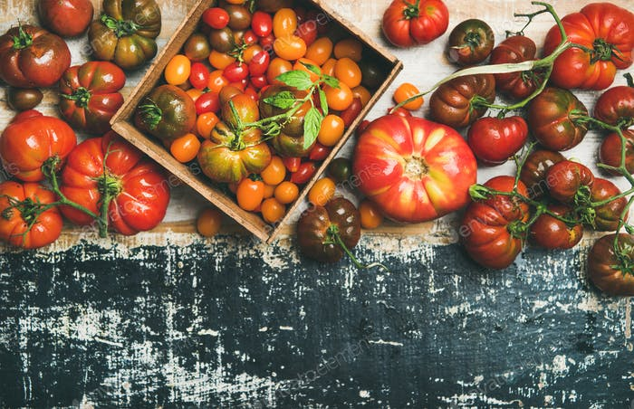 Flat -lay of fresh colorful ripe tomatoes over rustic background