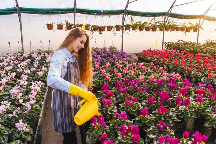 Woman in greenhouse with yellow watering can