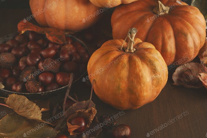 Beautiful pumpkins with leaves and chestnuts on wooden table