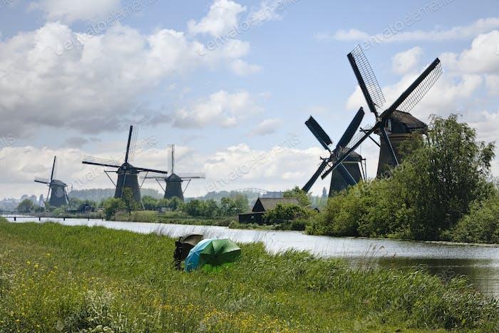Windmühlen. Niederländische Landschaft