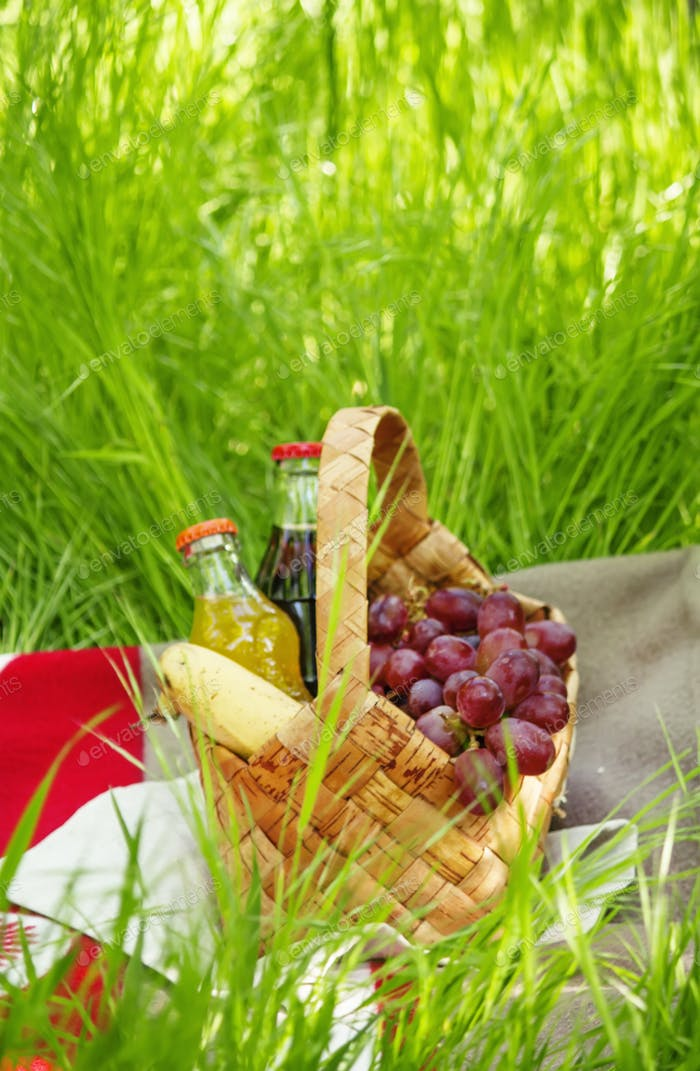 Picnic Basket with fruits and drinks on the meadow