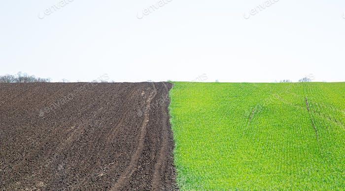 Black earth fields in Ukraine.