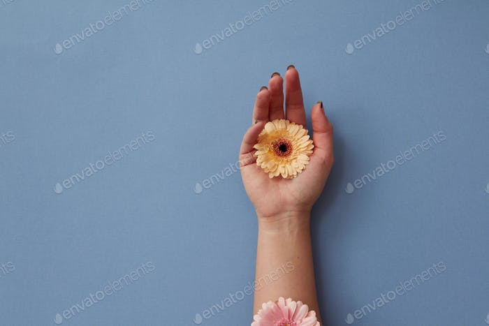A woman's hand with flowers appearing on it gentle pastel gerberas, moving and disappearing on a