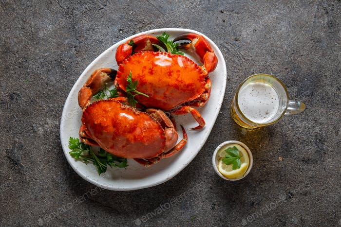 Krabben-Tentakel auf schwarzem Teller mit Witzwein, Zitrone und Kräutern Sauce
