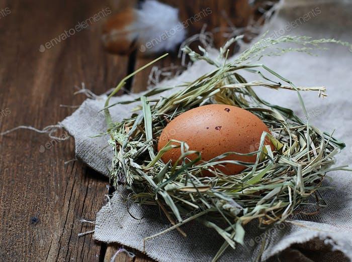 Hühnerei im Strohnest