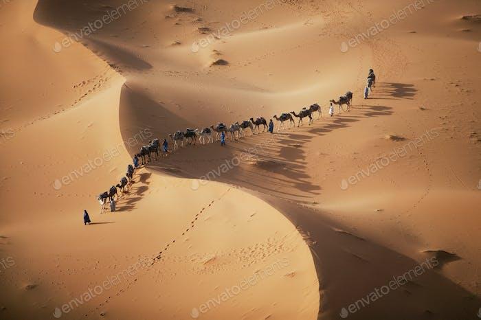 Die untergehende Sonne über der Wüste macht einen bezaubernden Schatten als eine Karawane aus Kamelhändlern Winde