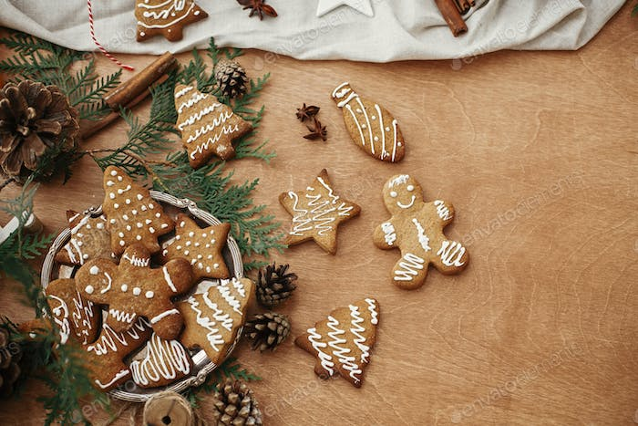 Christmas gingerbread cookies on vintage plate and anise, cinnamon, pine cones and cedar branches