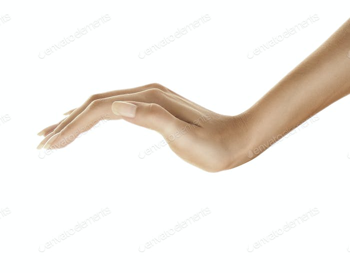 beautiful woman's hand isolated