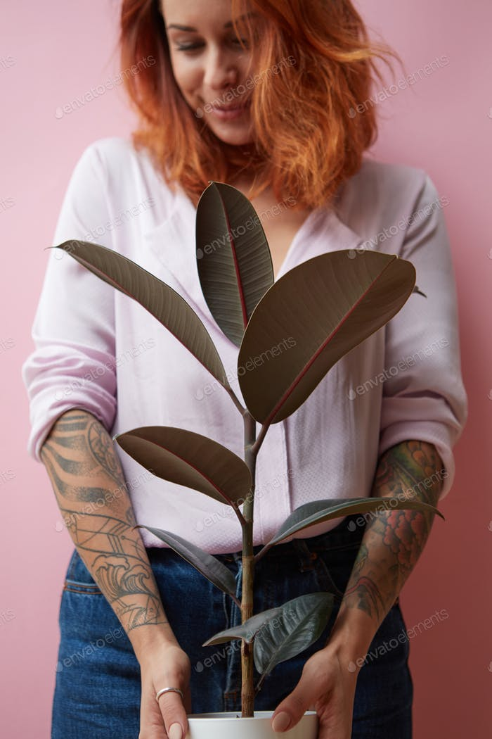 A smiling girl with a tattoo holds a pot with a ficus flower around a pink background with copy