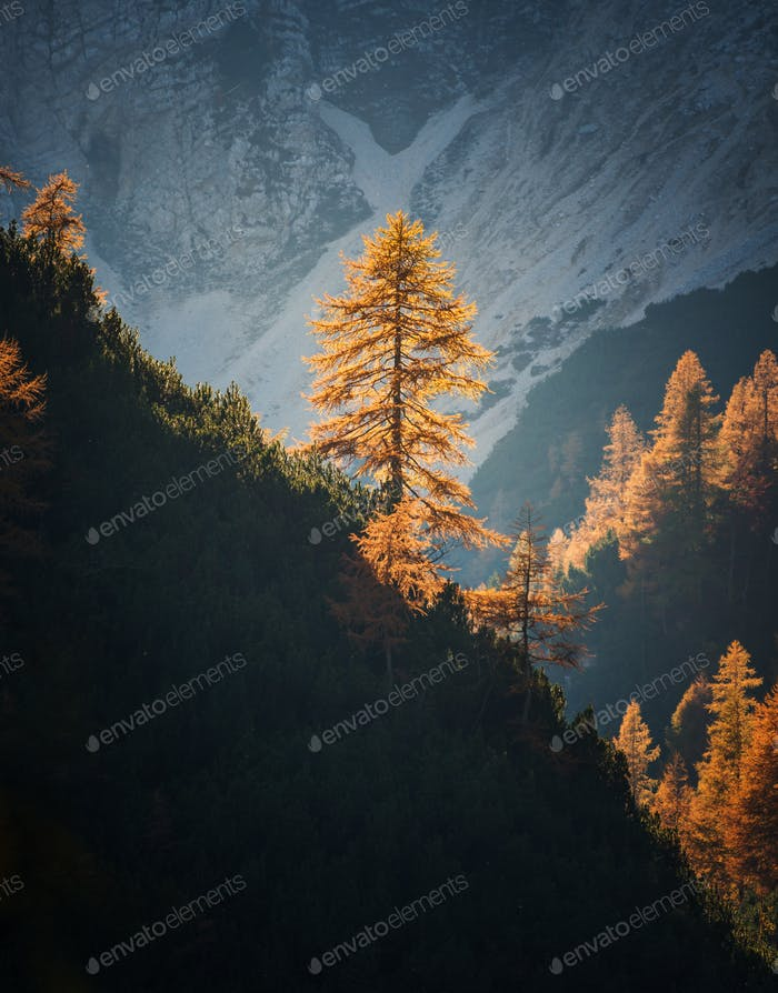 Autumn at Slemenova Spica in the Julian Alps mountains