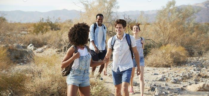 Gruppe von jungen Freunden gemeinsam durch Wüstenlandschaft wandern