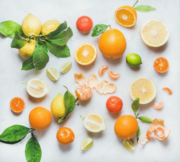 Vielzahl von Zitrusfrüchten für die Herstellung von gesundem Smoothie oder Saft