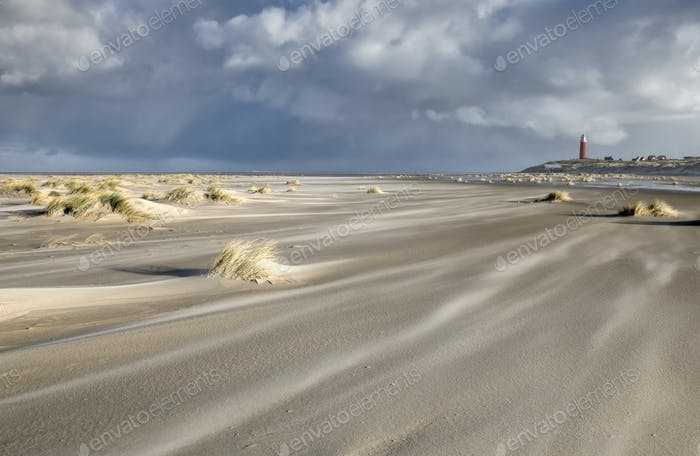 windy day on North sea sand beach