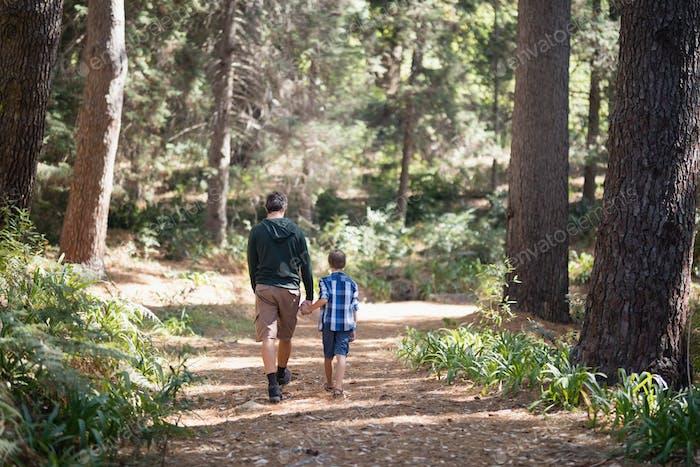 Vater und Sohn zu Fuß im Wald am sonnigen Tag