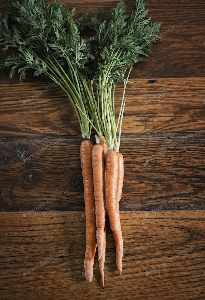 A small bunch of carrots with green leafy tops freshly harvested, lying on a tabletop.
