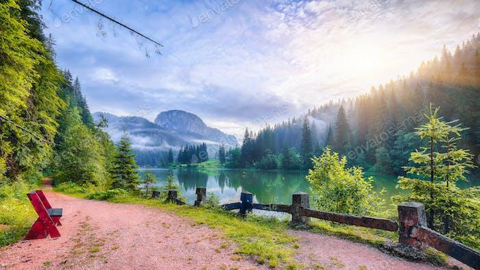 Majestic summer view of mountain lake Lacul Rosu or Red Lake or Killer Lake