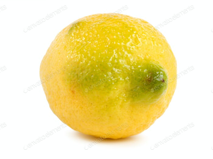 Лимон изолированный