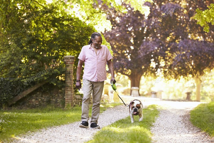 Senior Man Walking With Pet Bulldog In Countryside