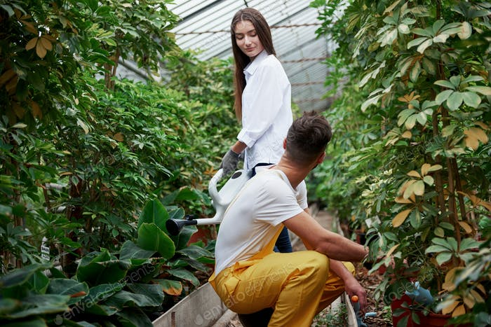 Looking at each other. Young couple of workers in the greenhouse with water canister