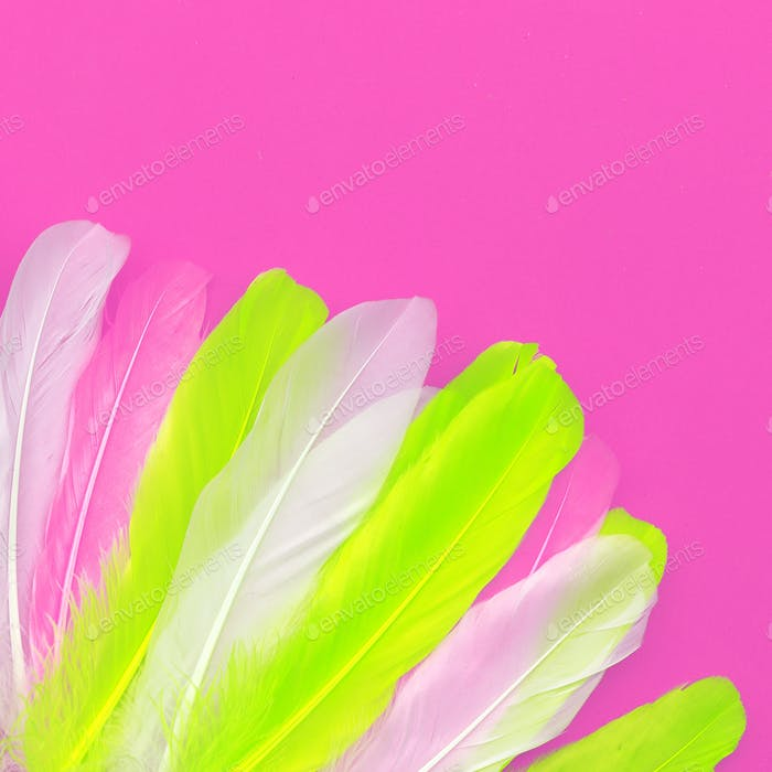 Feathers art design fashion pink color trend