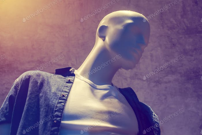 Boutique mannequin, male figure portrait