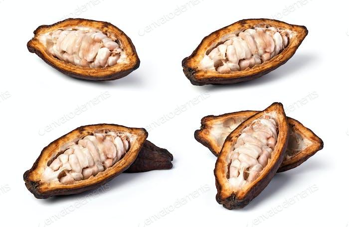set of cocoa pod