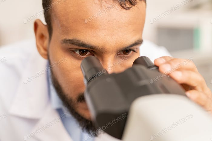 Laboratory expert looking in microscope