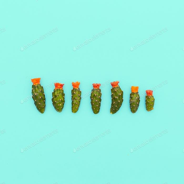 Mini cactus set. Minimal art