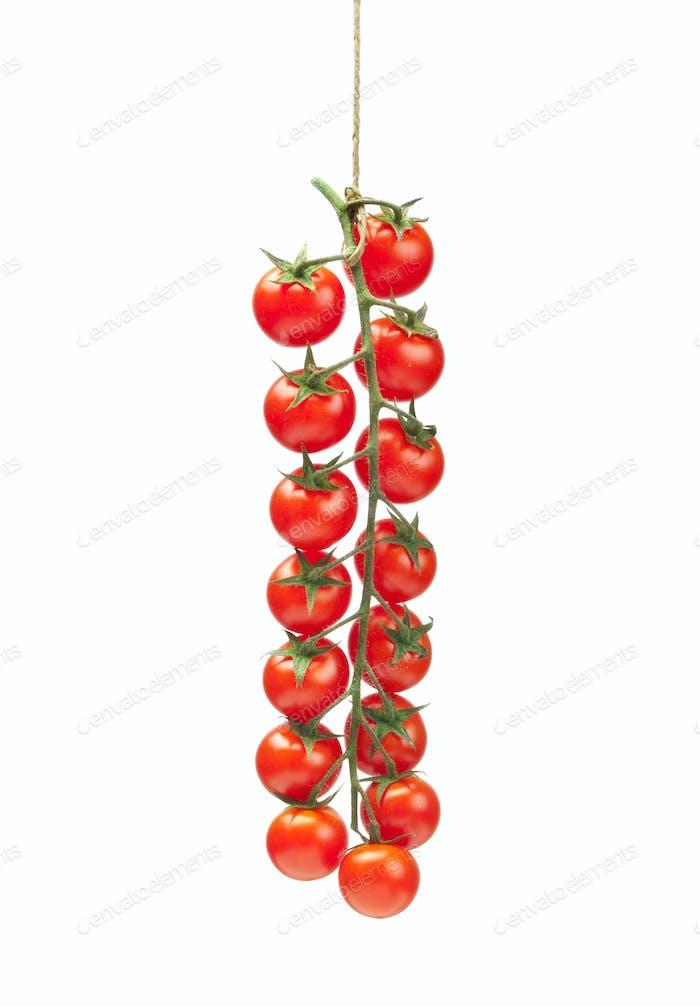 Tomatoes pachino