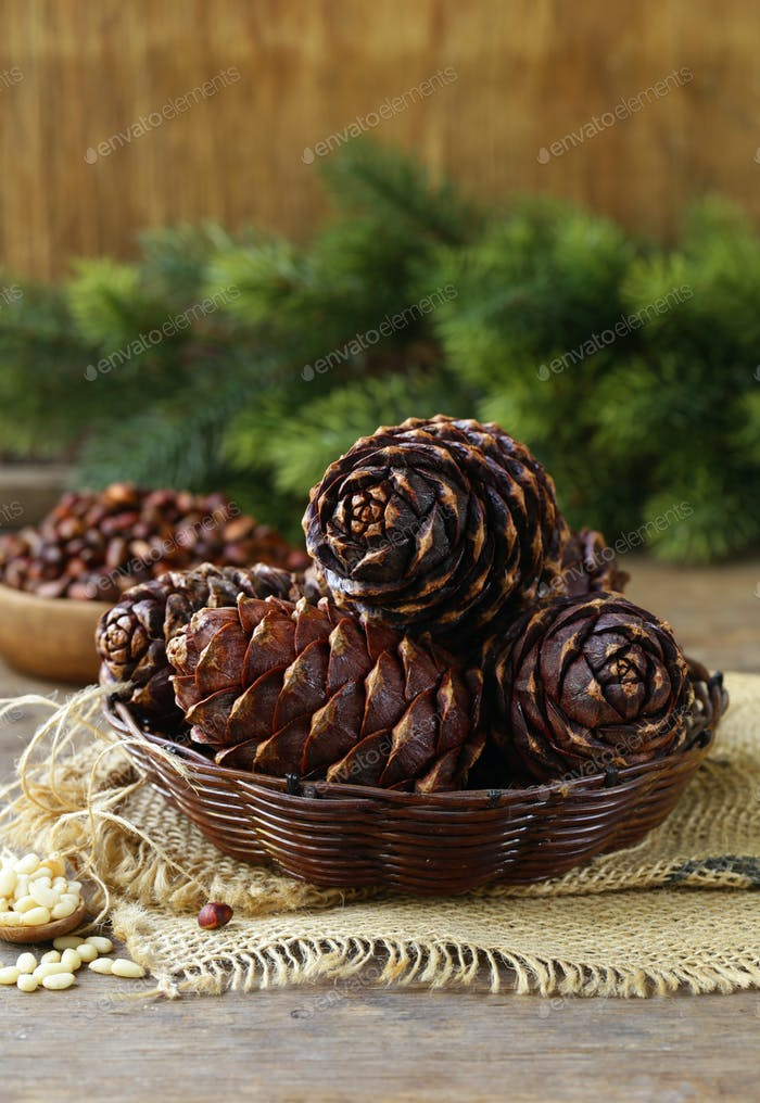 Pine Cones and Nuts