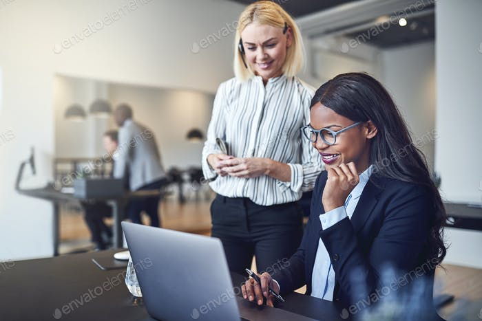 Smiling businesswomen working over a laptop together in an office