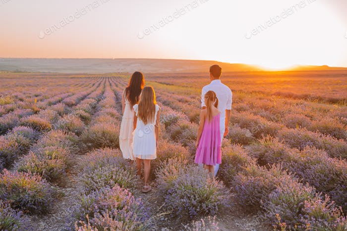 Family in lavender flowers field at dawn